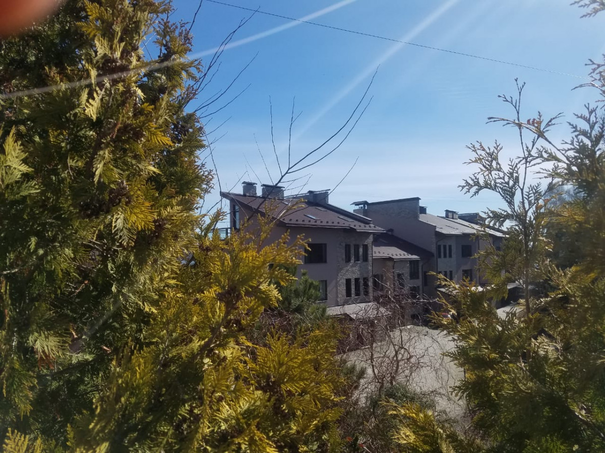 «Човникові станції» тернопільських багатіїв. Або хто збудував огорожі на березі Тернопільського озера